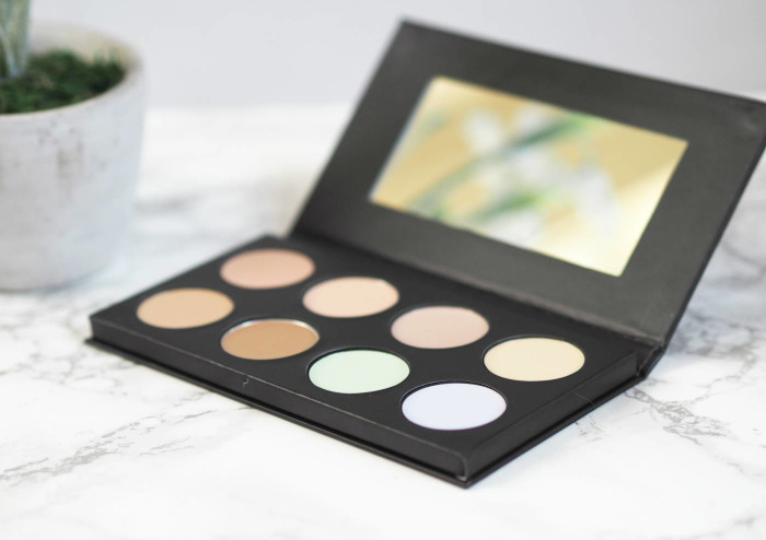 Collection #ConcealAndLightLikeAPro Palette Review